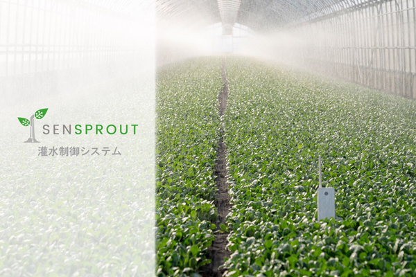SENSPROUT、スマホ・PCから灌水予約・管理ができる「灌水制御システム」