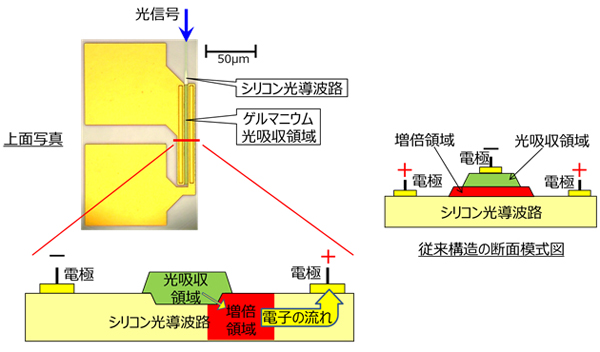 他の光素子と集積可能なフォトダイオードとして、21.8A/Wの受光感度を達成