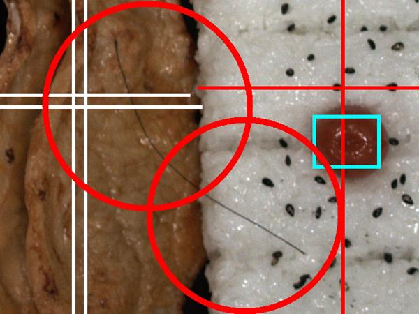 検査・検品を画像認識で解決する「フォトナビ・目視レス」の提供開始