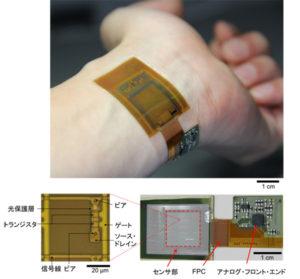 JDI、東大と共同研究で 指紋・静脈・脈波を計測可能な薄型イメージセンサを開発